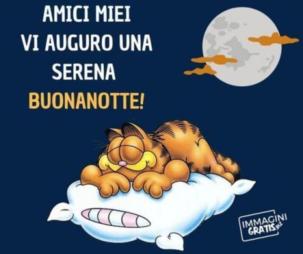1463 Immagini E Frasi Di Buonanotte Pagina 29